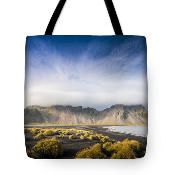 The Young Man Agreed Tote Bag