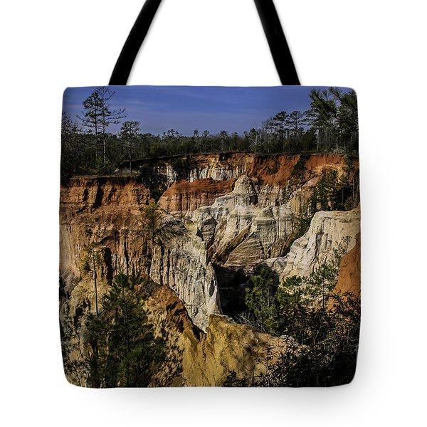 Beauty In Erosion Tote Bag