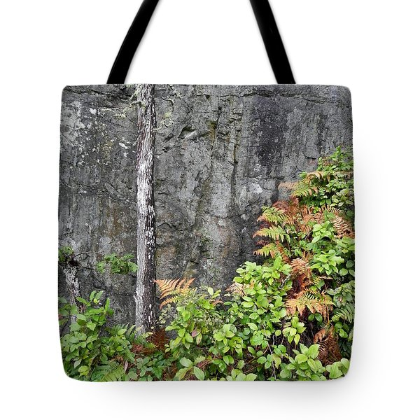 Tote Bag featuring the photograph Thetis In Fall by Cheryl Hoyle