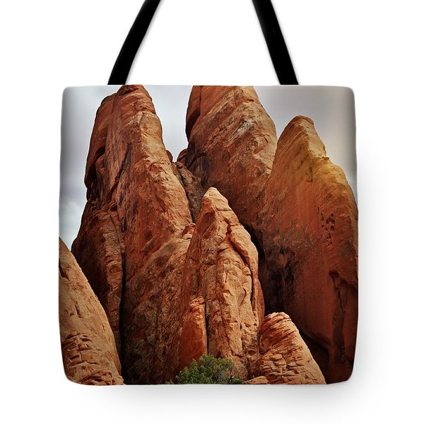 Thick Fins Tote Bag by Marty Koch