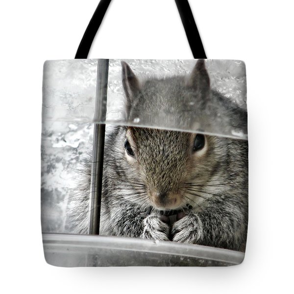 Thief In The Birdfeeder Tote Bag