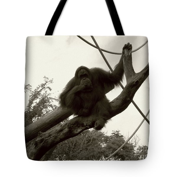 Tote Bag featuring the photograph Thinking Of You Sepia by Joseph Baril