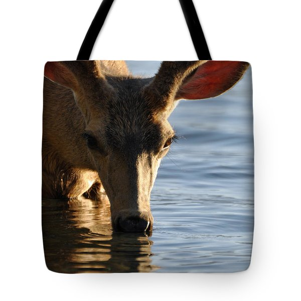 Thirsty Deer In Lake Mcdonald Tote Bag by Bruce Gourley