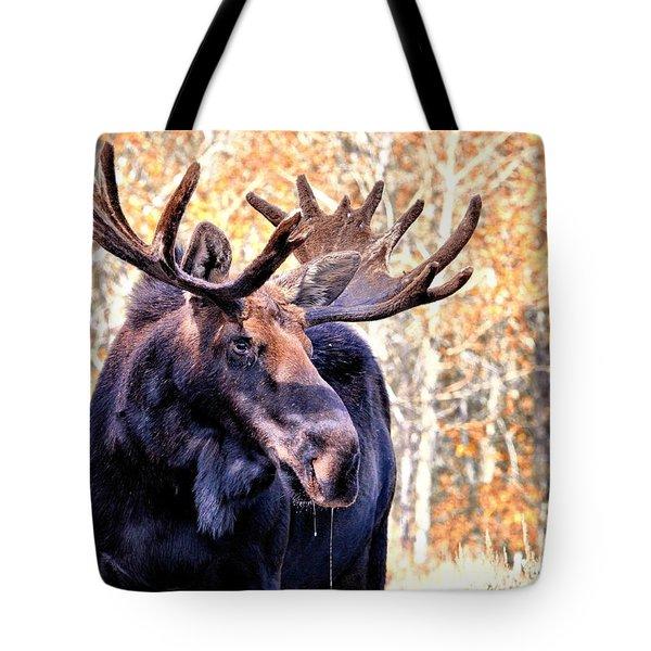 Thirsty Moose Tote Bag