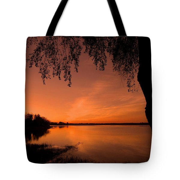 This Is A New Day ... Tote Bag by Juergen Weiss