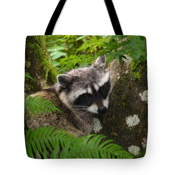 This Is A Nice Spot To Sleep Tote Bag by Kym Backland