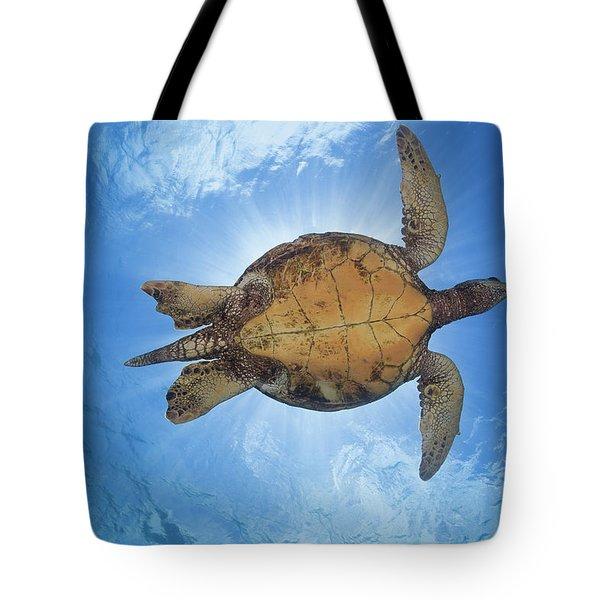 This Male Green Sea Turtle  Chelonia Tote Bag