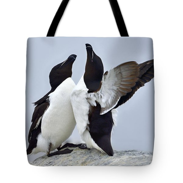 This Much Tote Bag by Tony Beck