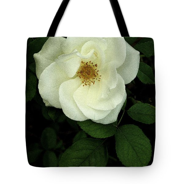 Tote Bag featuring the photograph This Rose For You by James C Thomas