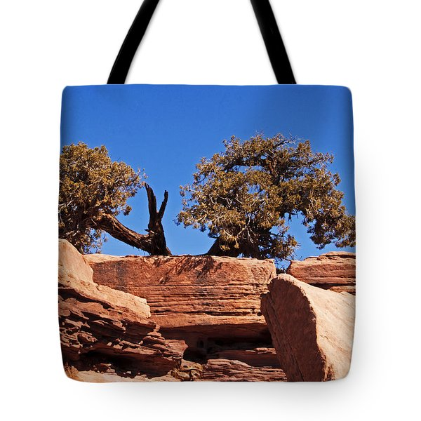 This Way Or That Tote Bag by Bob and Nancy Kendrick