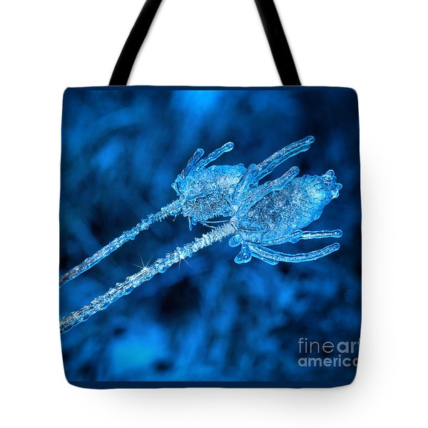 Thistle Plant On Icy Night Tote Bag