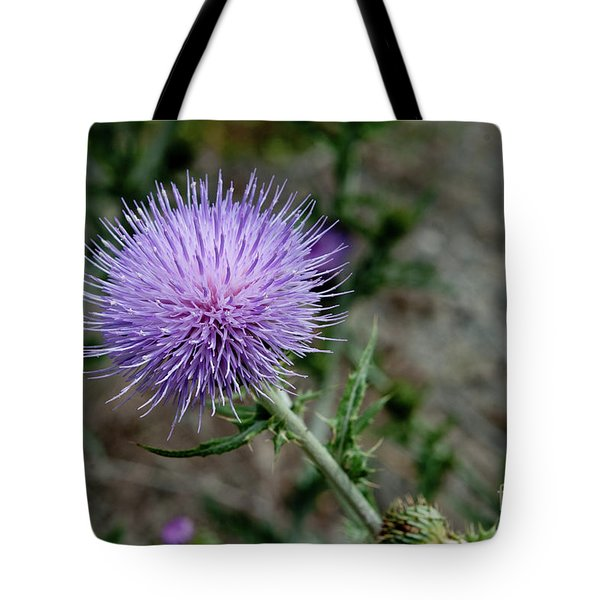 Tote Bag featuring the photograph Thistle by Rod Wiens