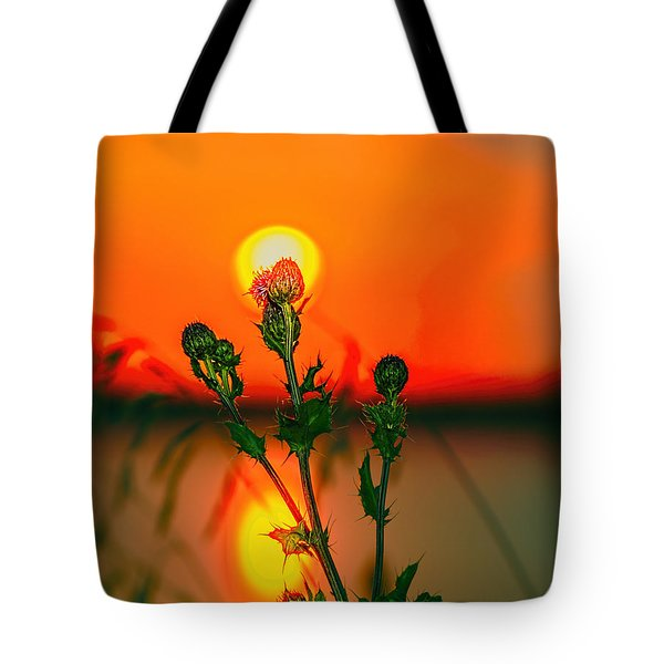 Thistle At Sunset Tote Bag