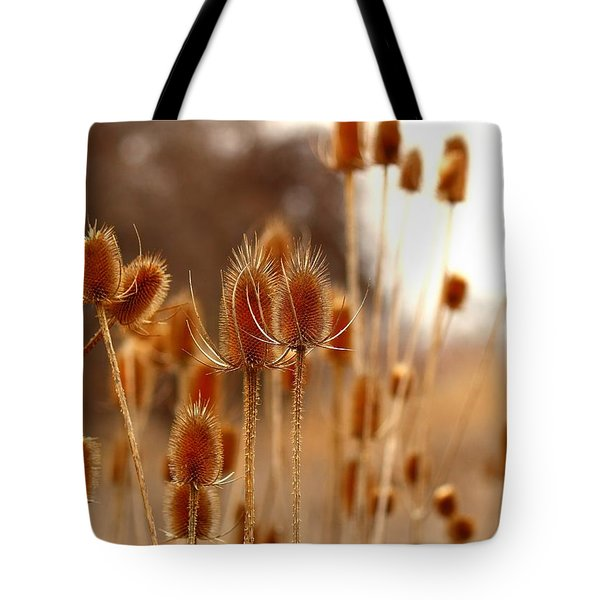 Tote Bag featuring the photograph Thistles by Lynn Hopwood