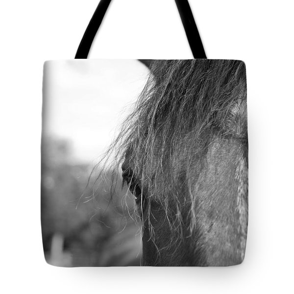 Thoroughbred B/w Tote Bag