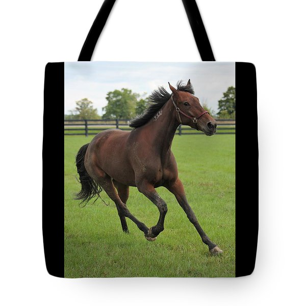 Standardbred Tote Bag