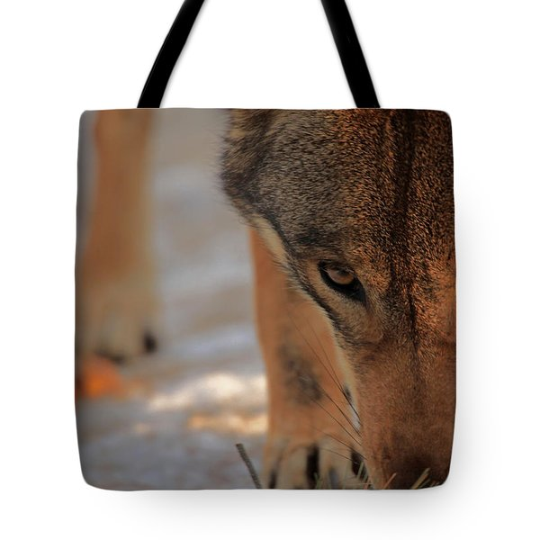 Those Eyes Tote Bag by Karol Livote