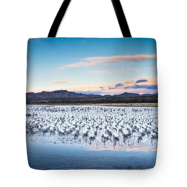 Snow Geese And Sandhill Cranes Before The Sunrise Flight - Bosque Del Apache, New Mexico Tote Bag