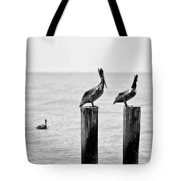 Three Amigos Tote Bag by Scott Pellegrin