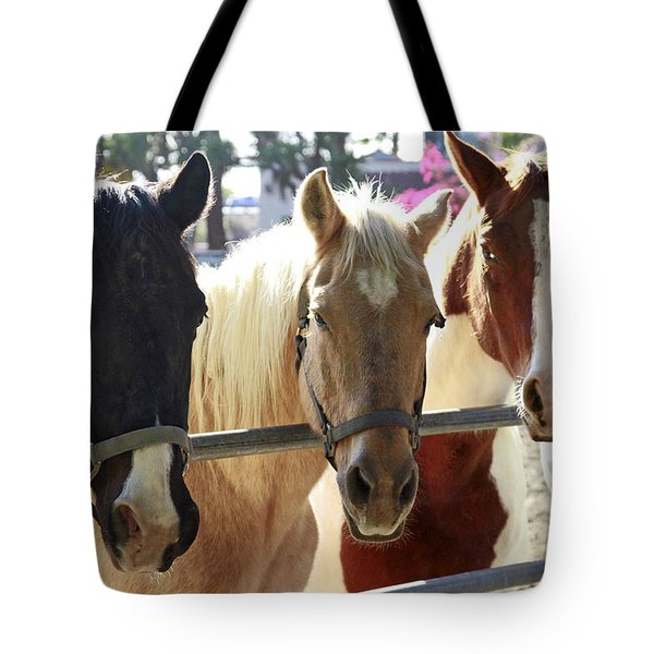 Three Amigos Tote Bag by Shoal Hollingsworth