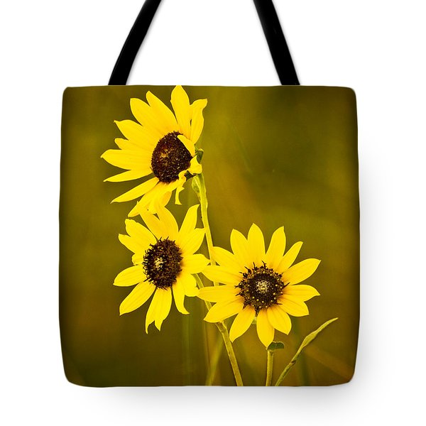Tote Bag featuring the photograph A Trio Of Black Eyed Susans by Gary Slawsky