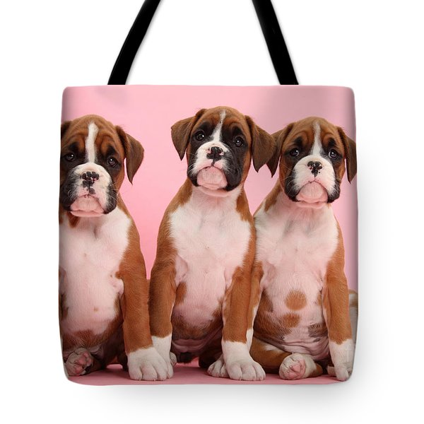 Three Boxer Puppies Tote Bag by Mark Taylor
