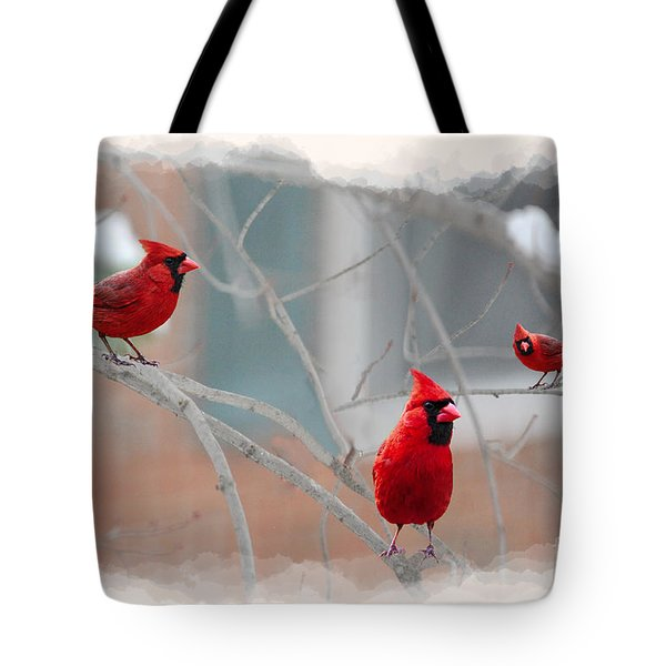 Three Cardinals In A Tree Tote Bag by Dan Friend