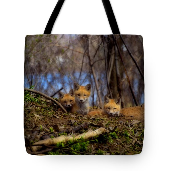 Three Cute Kit Foxes At Attention Tote Bag