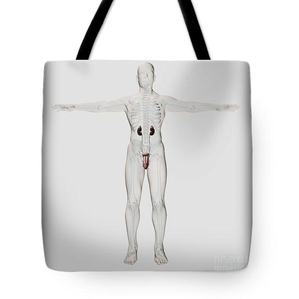 Three Dimensional Medical Illustration Tote Bag by Stocktrek Images