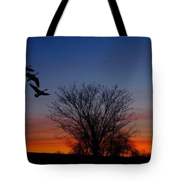 Three Geese At Sunset Tote Bag by Raymond Salani III