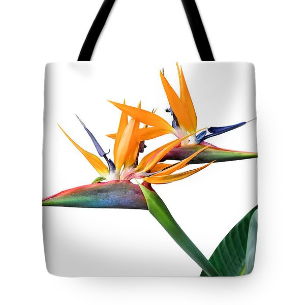 Three Heads Are Better Than One Tote Bag by Denise Bird
