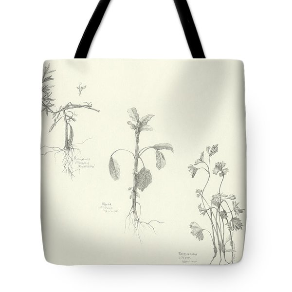 Three Herbs Tote Bag