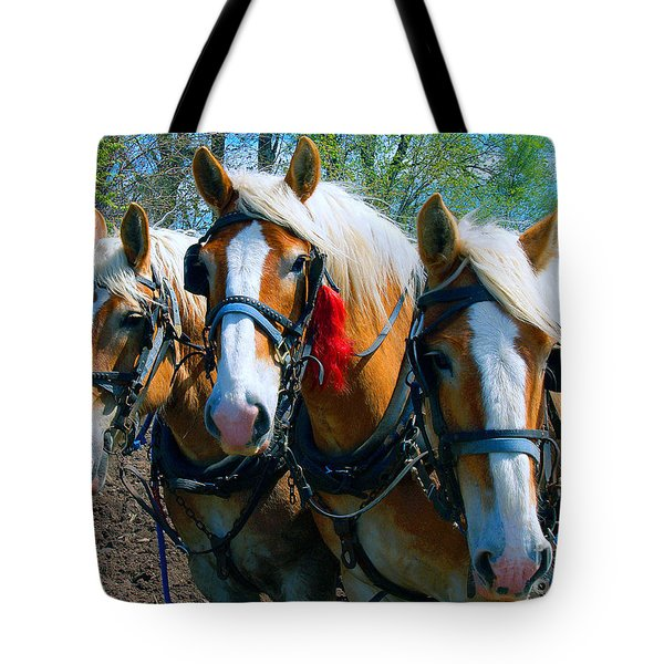 Tote Bag featuring the photograph Three Horses Break Time  by Tom Jelen