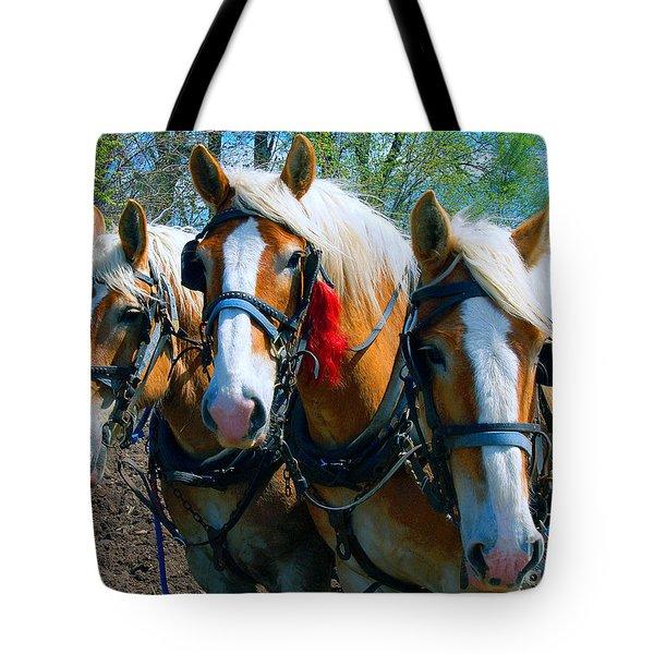 Three Horses Break Time  Tote Bag