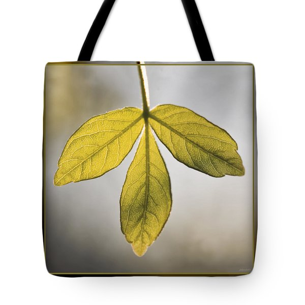 Tote Bag featuring the photograph Three Leaves by Jaki Miller