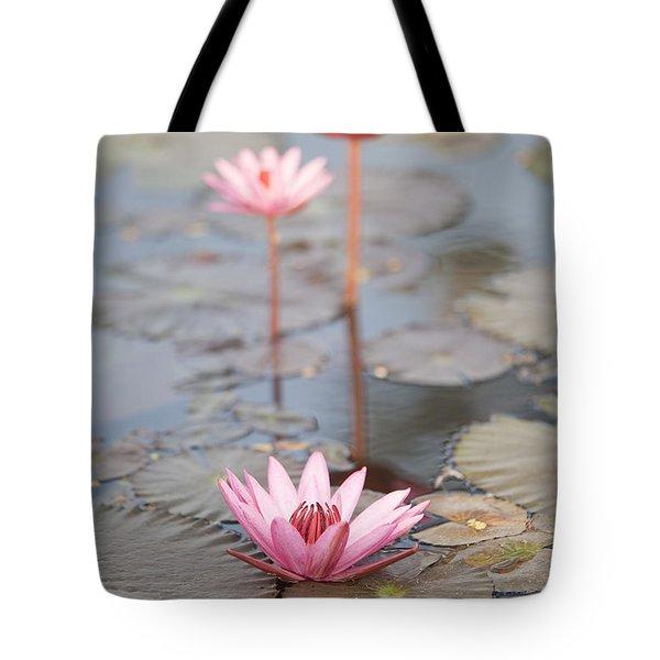 Three Lotus Flowers Tote Bag