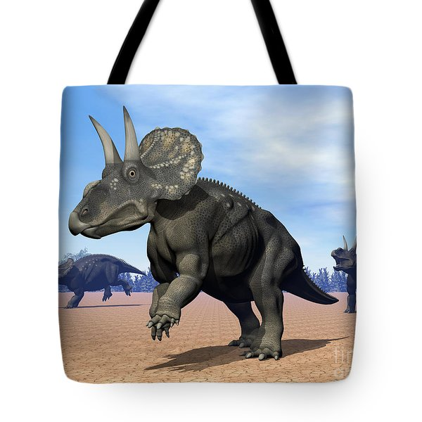 Three Nedoceratops In The Desert Tote Bag by Elena Duvernay