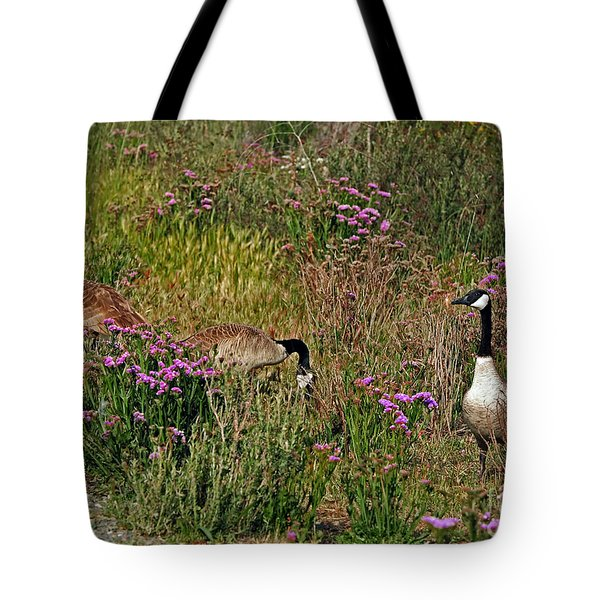 Tote Bag featuring the photograph Three Quiet Canada Geese by Susan Wiedmann