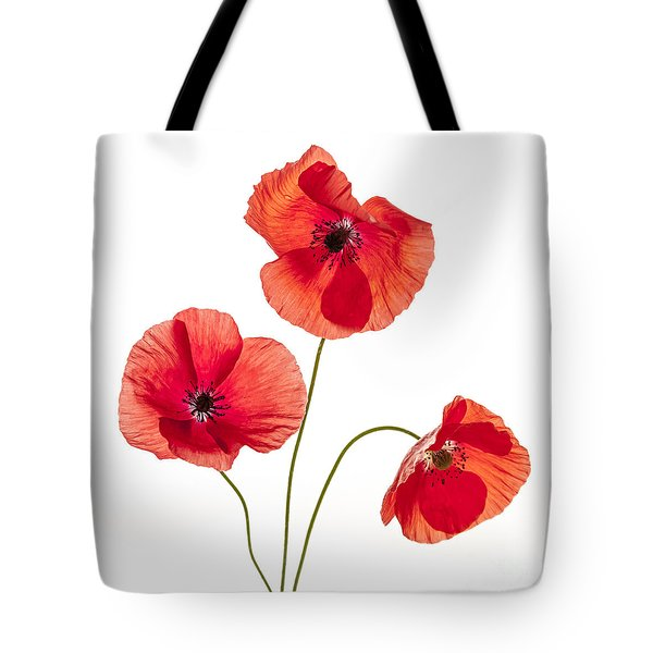 Three Red Poppies Tote Bag