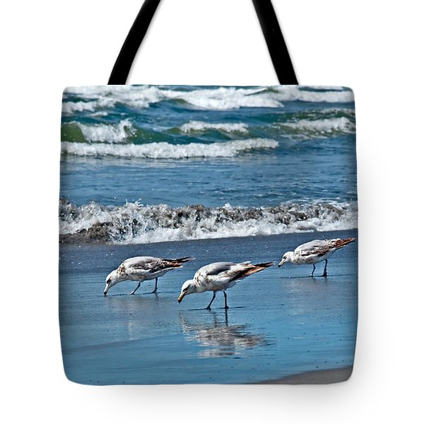 Tote Bag featuring the photograph Three Seagulls At Ocean Shore Art Prints by Valerie Garner
