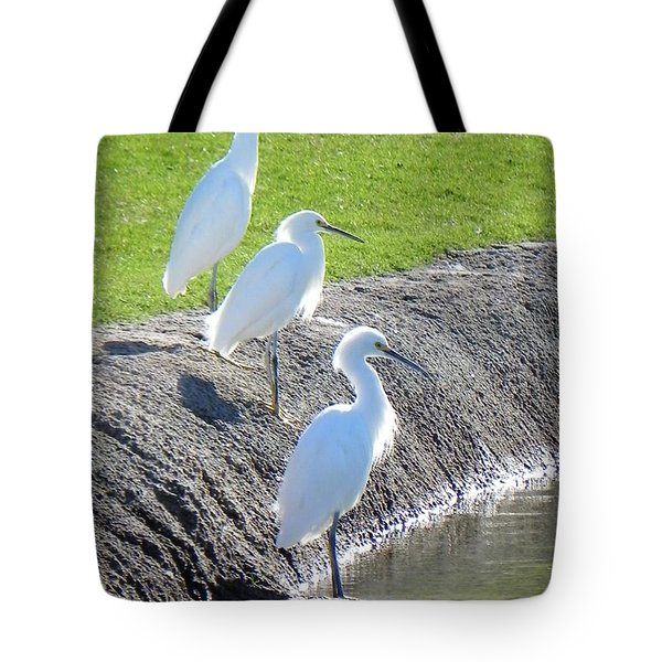 Tote Bag featuring the photograph Three Stooges by Deb Halloran