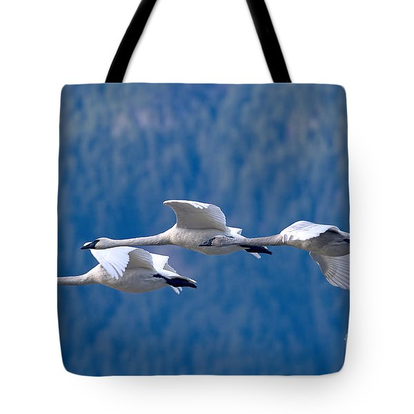 Three Swans Flying Tote Bag by Sharon Talson