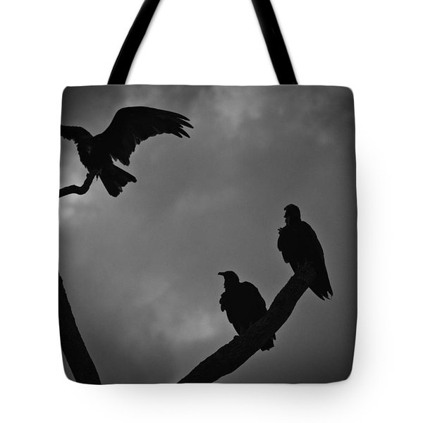 Three Vultures Tote Bag by Bradley R Youngberg
