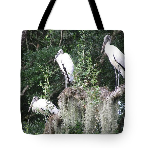 Three Wood Storks Tote Bag