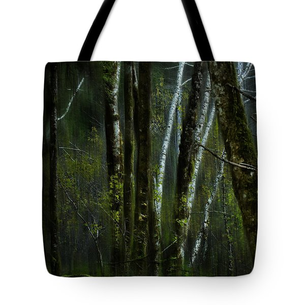 Through A Glass . . . Darkly Tote Bag