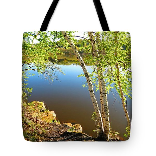 Through The Birch Tote Bag by MTBobbins Photography