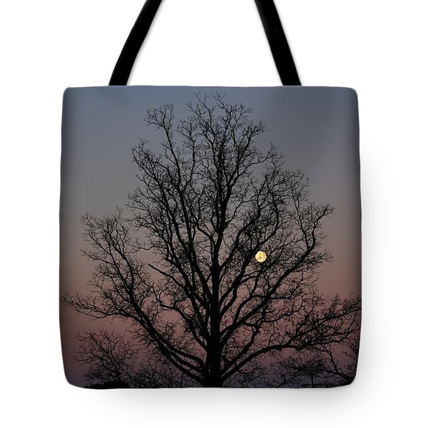 Through The Boughs Landscape Tote Bag by Dan Stone