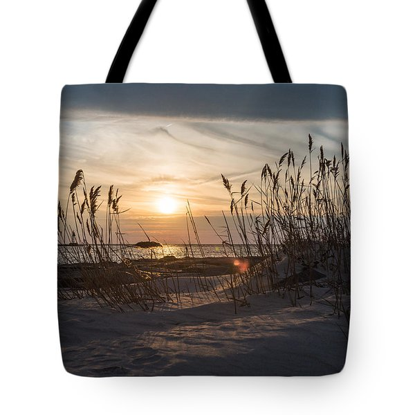 Through The Reeds Tote Bag