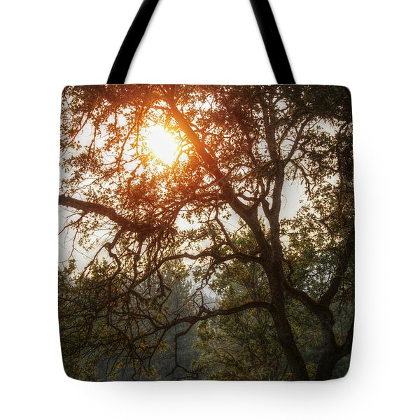 Tote Bag featuring the photograph Through The Trees by Melanie Lankford Photography