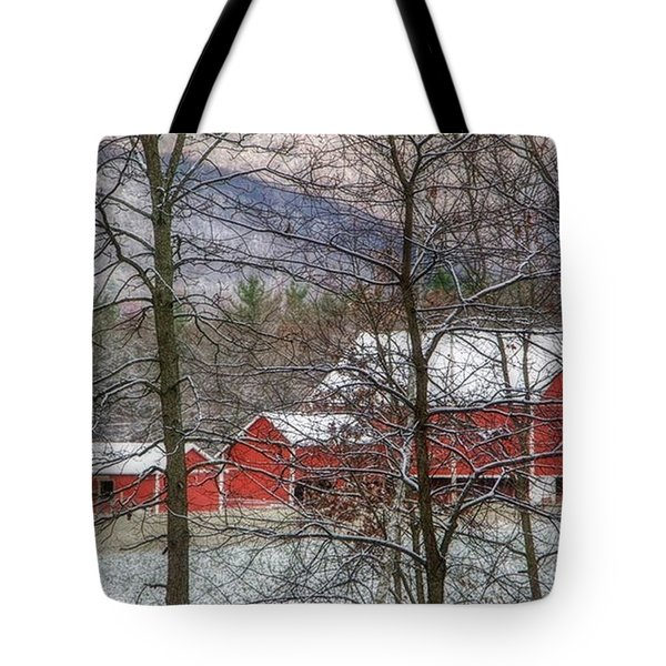 Through The Trees Tote Bag by Stephanie Calhoun